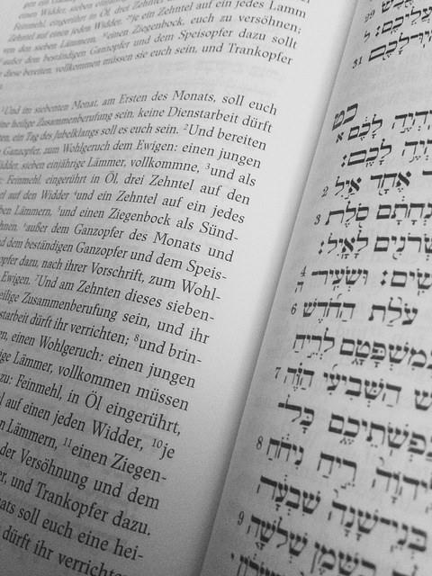 Blick in die Torahausgabe des Herder Verlags