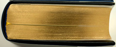 Das Buch Tanja - der Goldschnitt